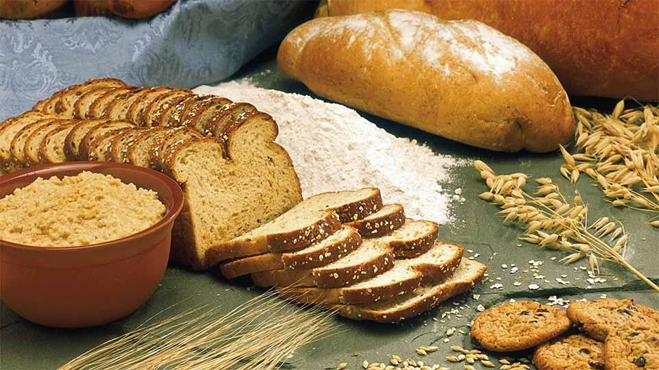 대시 다이어트 식단 예시 통밀빵